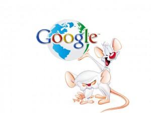 googlepinky
